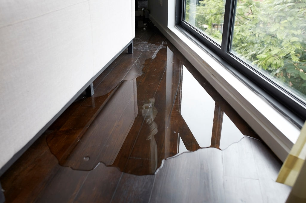 water damage cleanup lakewood